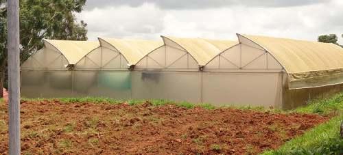 Polyhouse Farming in Hindi