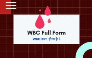 WBC Full Form
